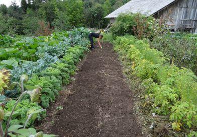 jardiner.jpg