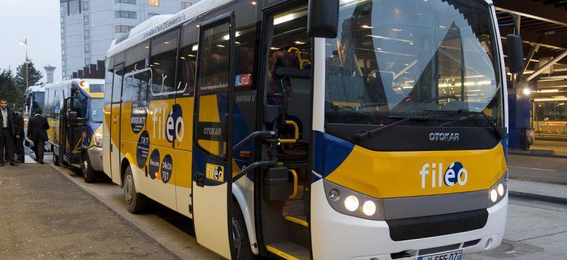 bus_fileo.jpg