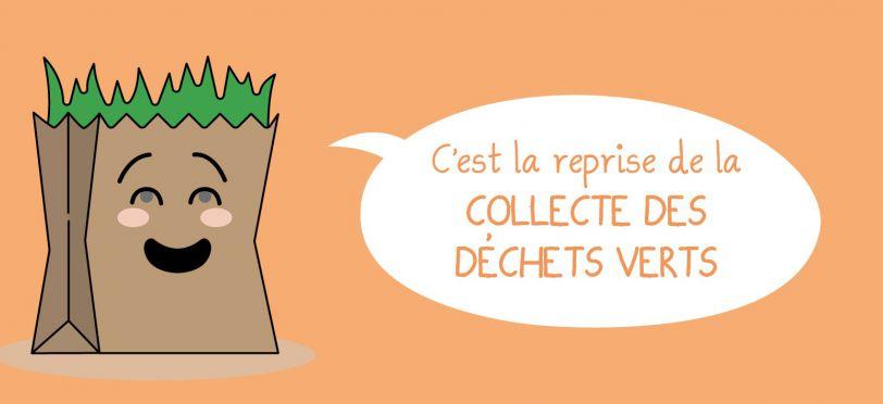 slider_dechets_verts_19.jpg