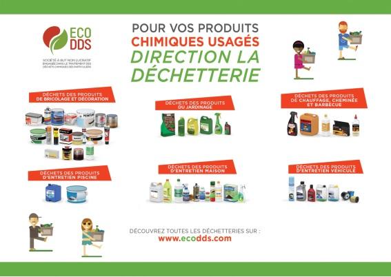 eco_dds.jpg